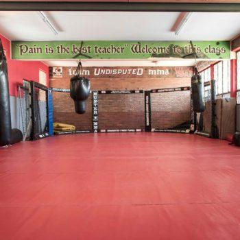 Undisputed MMA Room
